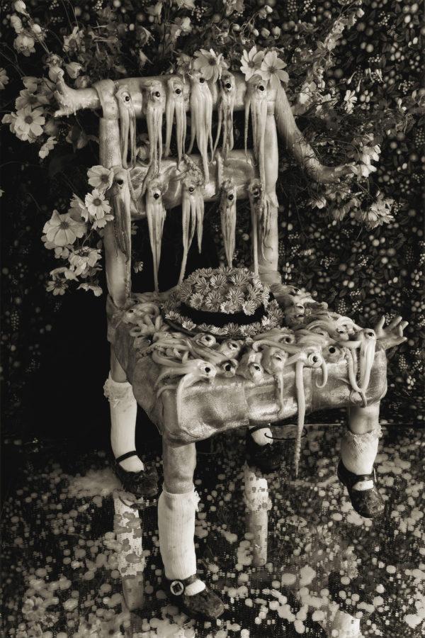 Cuttlefish and Chair  1995, platinum palladium print, edition of 7, 16x20 in ©Michiko Kon