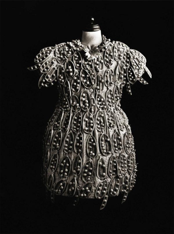 Peas and Dress  1993, platinum palladium print, edition of 7, 16x20 in ©Michiko Kon