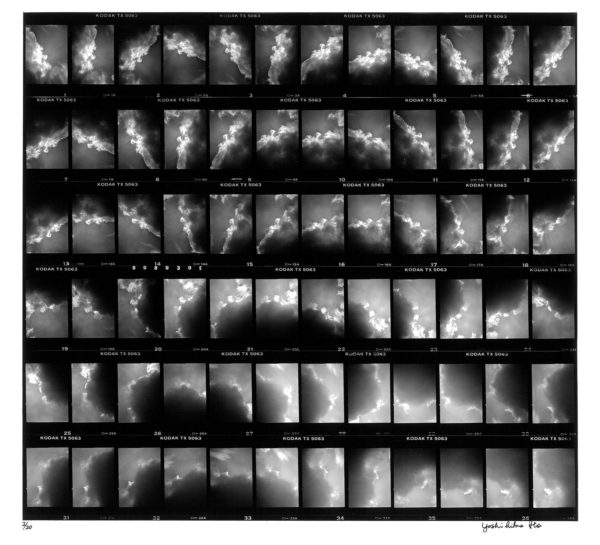 86036, 1986, gelatin silver print : 1987, Limited edition of 20, 11x14 in ©Yoshihiko Ito