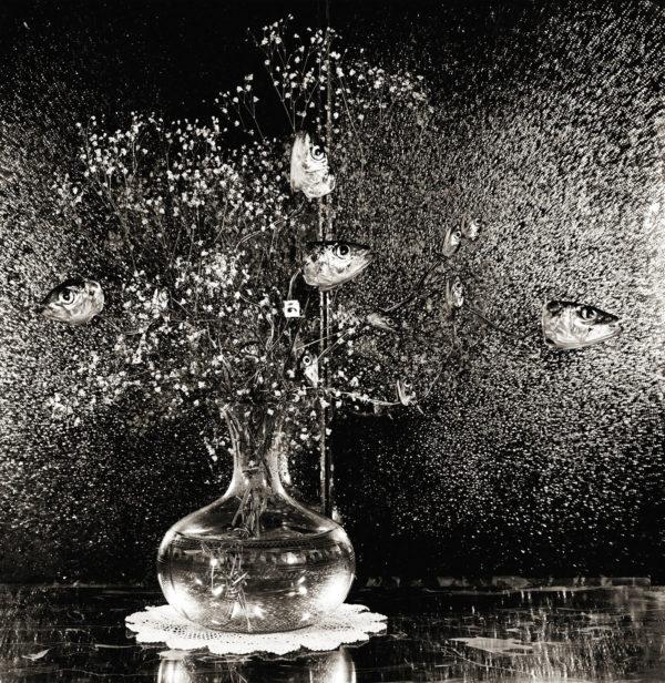 Sardines and Baby's Breath  1984, platinum palladium print, edition of 7, 16x20 in ©Michiko Kon
