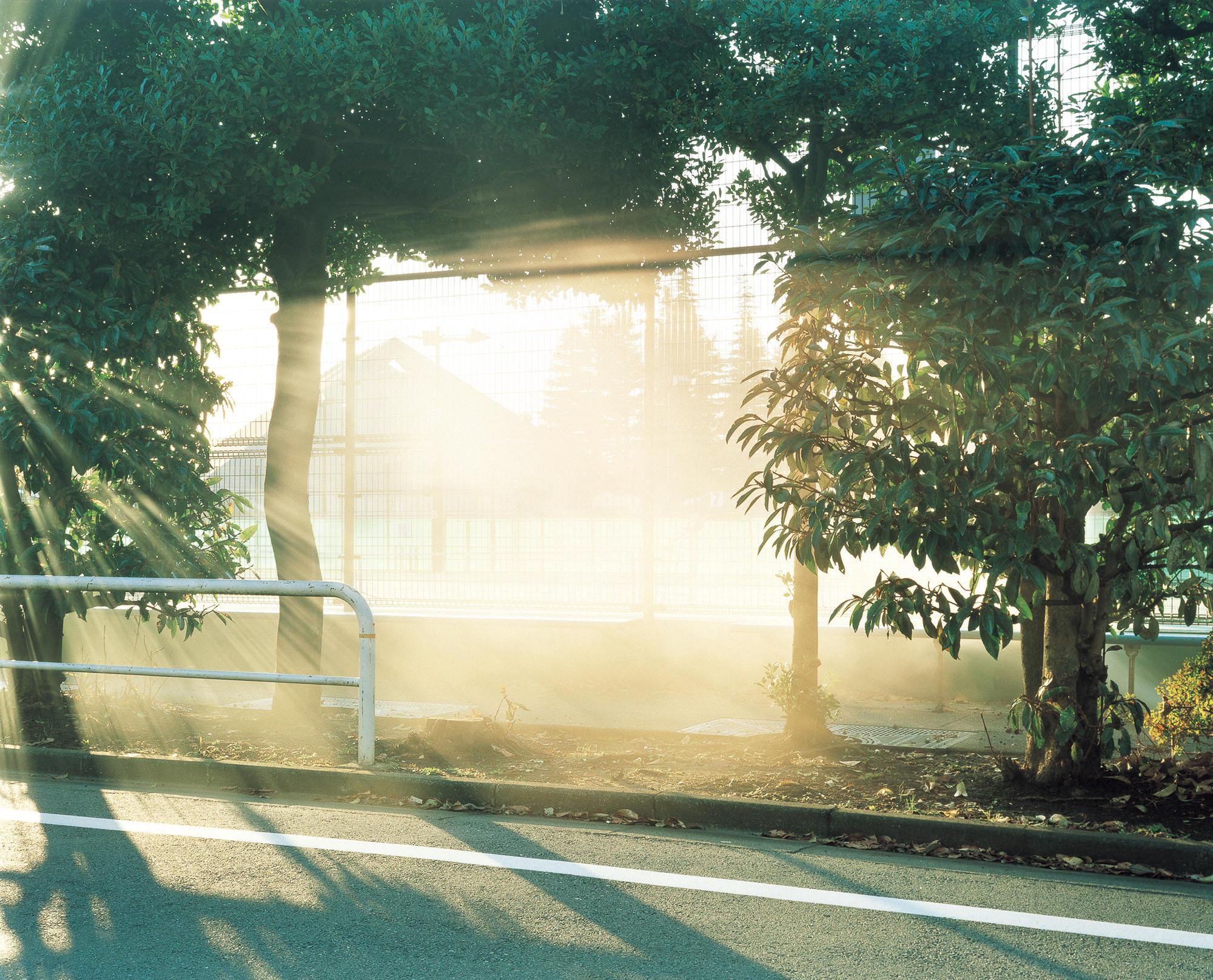 photograph_YujiHAMADA
