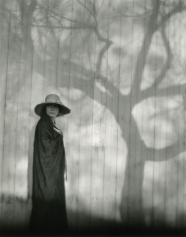 Prologue to a Sad Spring  1920, gelatin silver print by Cole Weston in 1970s - 1980, 7 1/4 x 9 1/4 in © 1981 Center for Creative Photography, Arizona Board of Regents