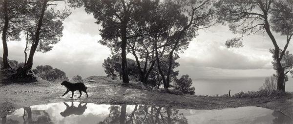 Mare Tirreno, Cilento, Italy, 1999, gelatin silver print, 7 1/2 x 10 in ©Pennti Sammallahti