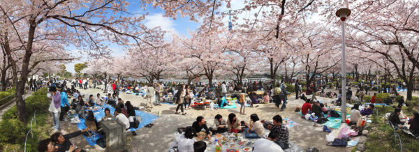 Apr. 10, 2011 Asakusa, Taito Ward, pigment inkjet print : 2011, limited edition of 7, 1019 x 371mm ©SATO Shintaro