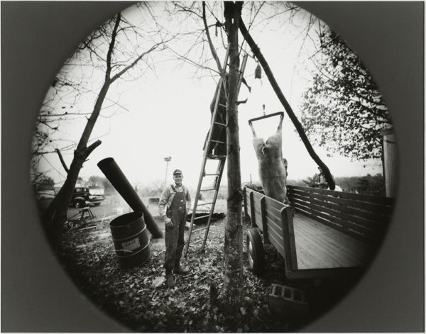 Hog Butchering  Near Danville  Virginia  1975, gelatin silver print, 8 x 10 in ©Emmet Gowin