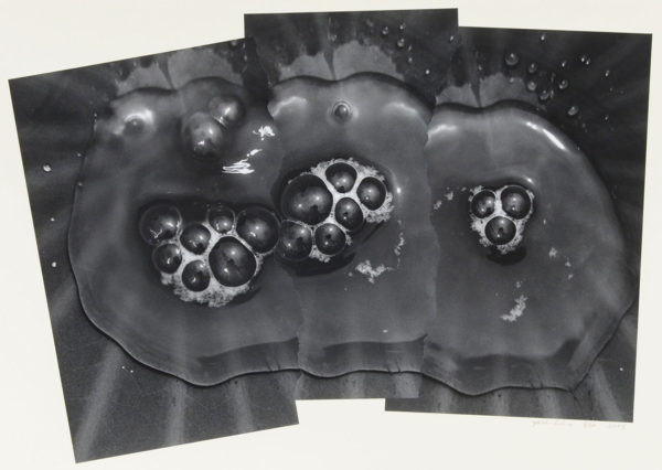 Bubbles of Water 212 S-II,  2003, gelatin silver print on watercolor paper with glue, 195×272mm limited edition #1/1 ©Yoshihiko Ito