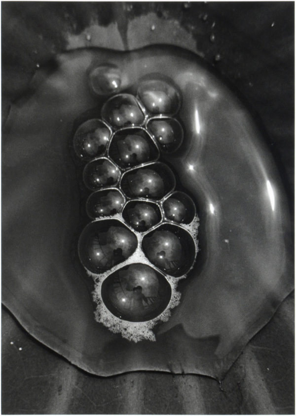 Bubbles of Water bbb. M101A,  2004, gelatin silver print, 8x10in limited edition of 8 ©Yoshihiko Ito