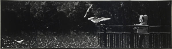 Seagull and a Girl・III  2007, gelatin silver print on watercolor paper with glue, 115×405mm limited edition #1/1 ©Yoshihiko Ito