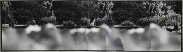 Summer  2007, gelatin silver print on watercolor paper with glue, 115×405mm limited edition #1/1 ©Yoshihiko Ito