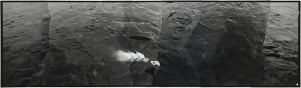 White Fish  2007, gelatin silver print on watercolor paper with glue, 115×405mm limited edition #1/1 ©Yoshihiko Ito