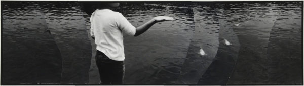 Palm  2007, gelatin silver print on watercolor paper with glue, 115×405mm limited edition #1/1 ©Yoshihiko Ito