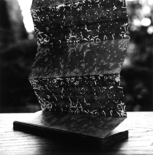 Gelatin silver print : 2016, 16x20 in, edition of 5, 011, ©Tokuko Ushioda