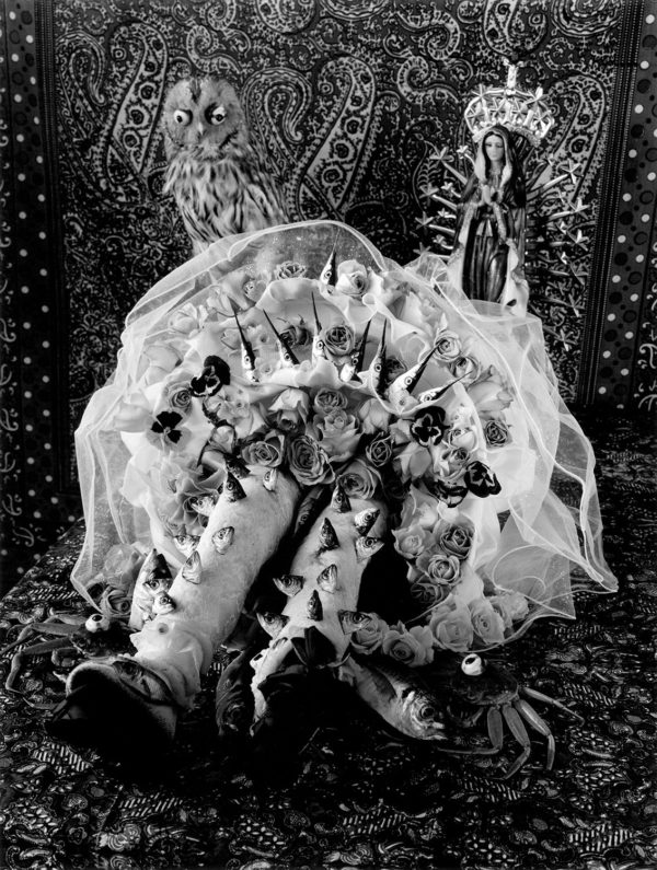 Inside of the petticoat,   gelatin silver print:2018,   16x20 in,   limited edition of 15,   ©Michiko Kon