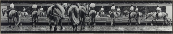 Scenery with horses・V  1999-2000, Gelatin silver print on watercolor paper with glue, 237×1220mm, limited edition: #1/1 ©Yoshihiko Ito
