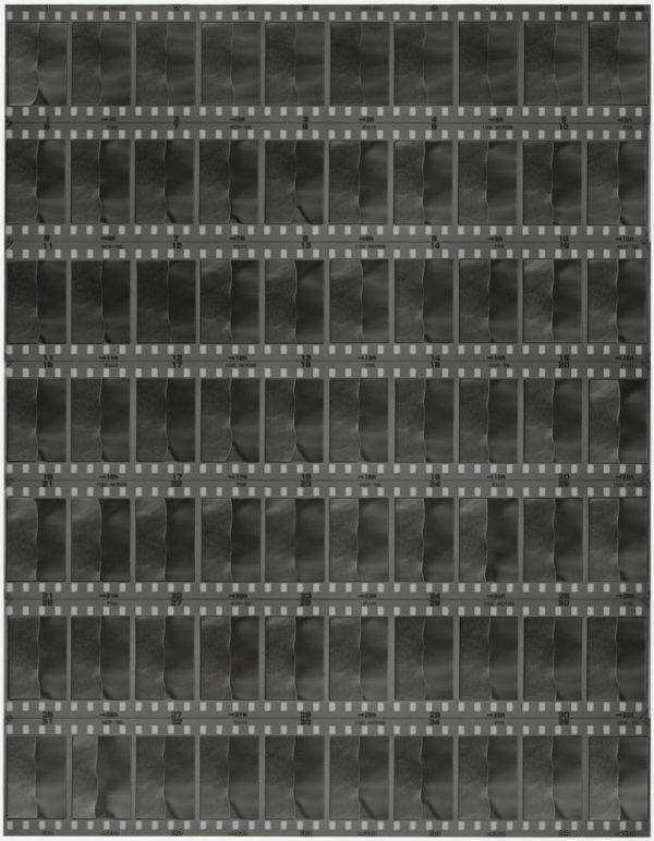 cp.0681 蓮の葉 I  2001, Gelatin silver print, Limited edition of 5, 11x14 in, ©Yoshihiko Ito