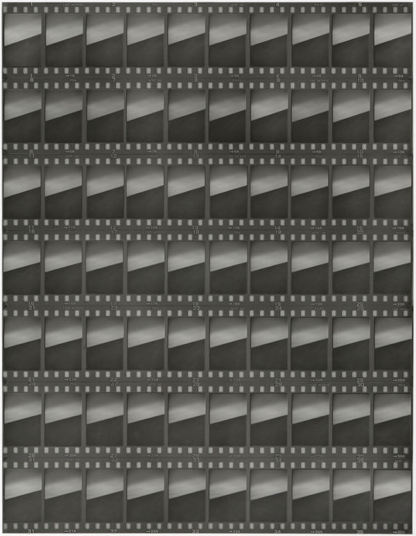 cp.0683 蓮の葉 III  2001, Gelatin silver print, Limited edition of 5, 11x14 in, ©Yoshihiko Ito