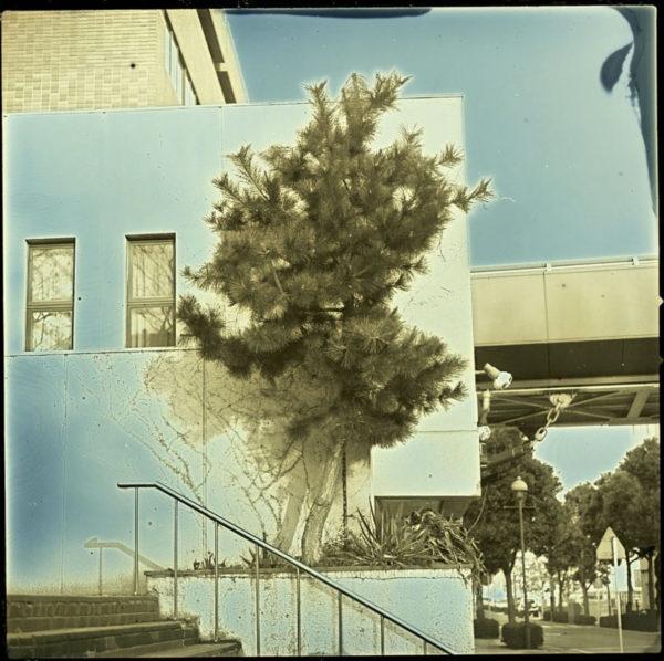 2011年1月27日 大桟橋  横浜.   ダゲレオタイプ,   unique,   6.3 x 6.3 cm ©Takashi Arai