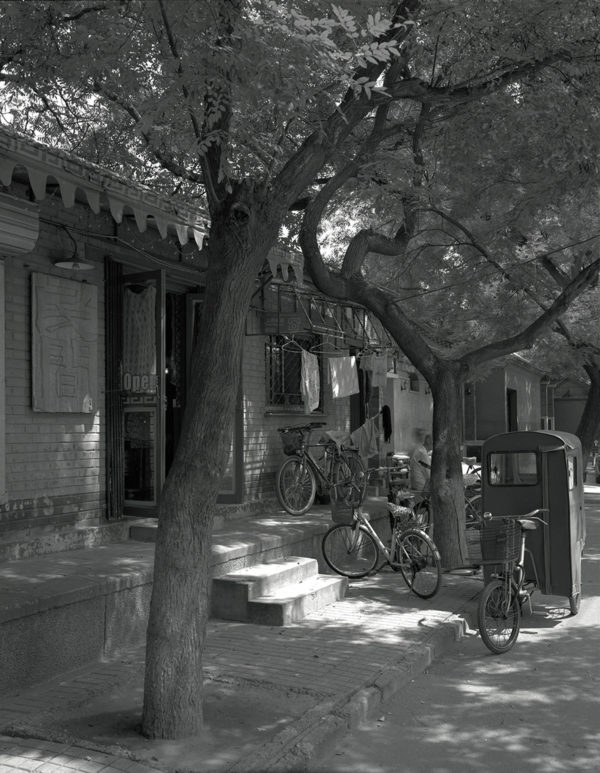 8-11911, 東城区 国子藍  2006年, Platinum Palladium Print, ©Naohisa Hara