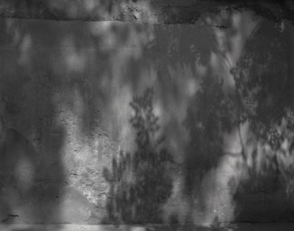 8-11921, 東城区 国子藍  2006年, Platinum Palladium Print, ©Naohisa Hara