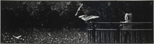 カモメと少女・III  2007, Gelatin silver print on watercolor paper with glue, 115×405mm, limited edition #1/1 ©Yoshihiko Ito