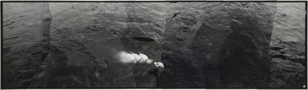 白魚  2007, Gelatin silver print on watercolor paper with glue, 115×405mm, limited edition #1/1 ©Yoshihiko Ito