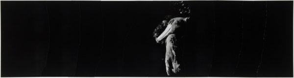 ハシビロコウ・IX  2008, Gelatin silver print on watercolor paper with glue, 160×565mm, limited edition #1/1 ©Yoshihiko Ito
