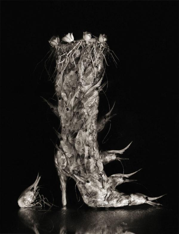 ボタンエビ+ブーツ  1992, Platinum Palladium Print, 16x20 in, edition of 7, ©Michiko Kon