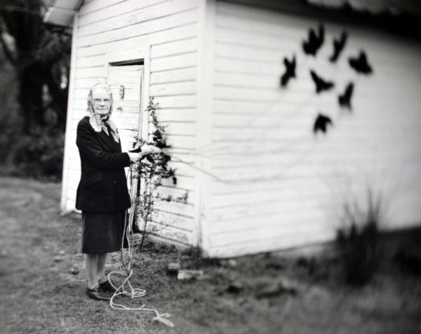 Bird Woman  1999, toned silver print, 16 x 20 in, ©Elijah Gowin