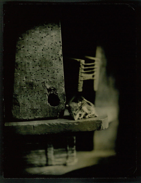 Esccaped  2014, ambrotype on ruby glass, edition of unique, 6 1/2 x 8 1/2 in, ©Mark Osterman