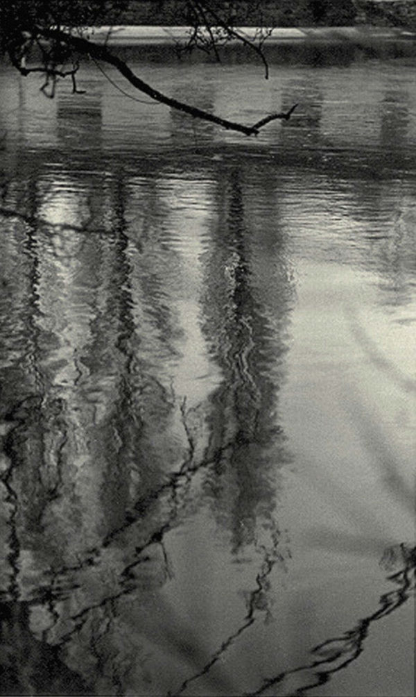 WS #3, toned gelatin silver print, edition of #17/30, 11 x 14 in, ©Tomio Seike