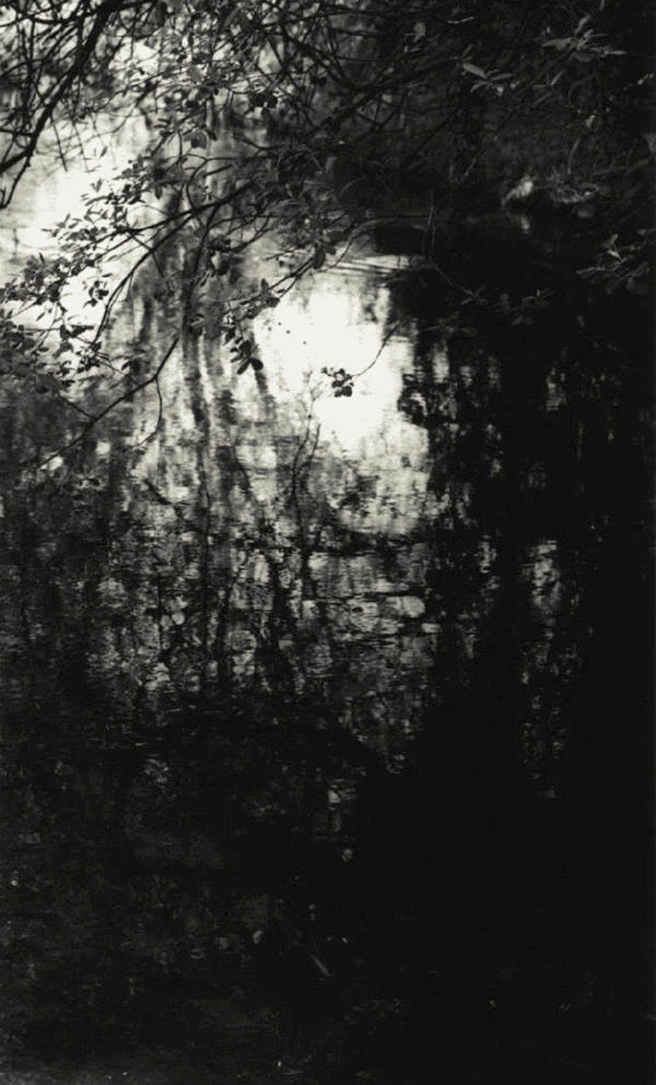 WS #14, toned gelatin silver print, edition of #6/30, 11 x 14 in, ©Tomio Seike