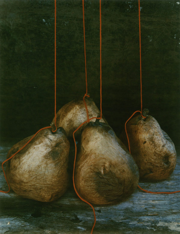 Four Pears  1979, dye-transfer print:1981, edition of 30/30, 8 3/4 x 11 in, ©Olivia Parker