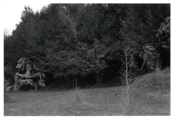 闘う龍と獅子 ヴィテルボ イタリア 1966, Gelatin silver print : 1969, 203x301mm, ©Kikuji Kawada