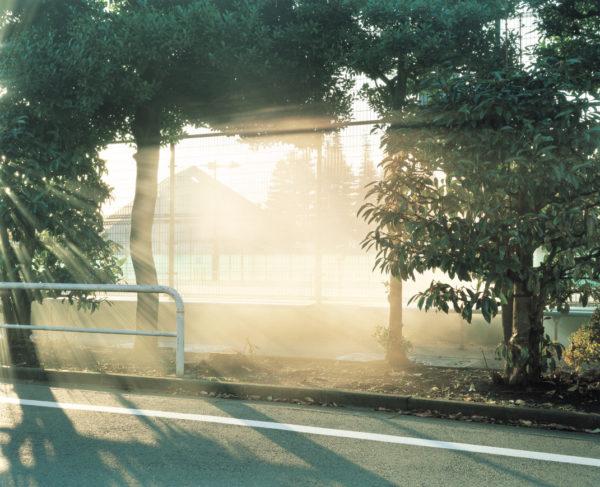 photograph_03, Chromogenic print:2013, Limited edition of 15, 20x24 inches  ©Yuji Hamada