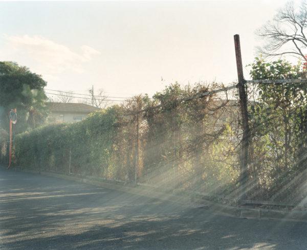 photograph_05, Chromogenic print:2013, Limited edition of 15, 20x24 inches  ©Yuji Hamada