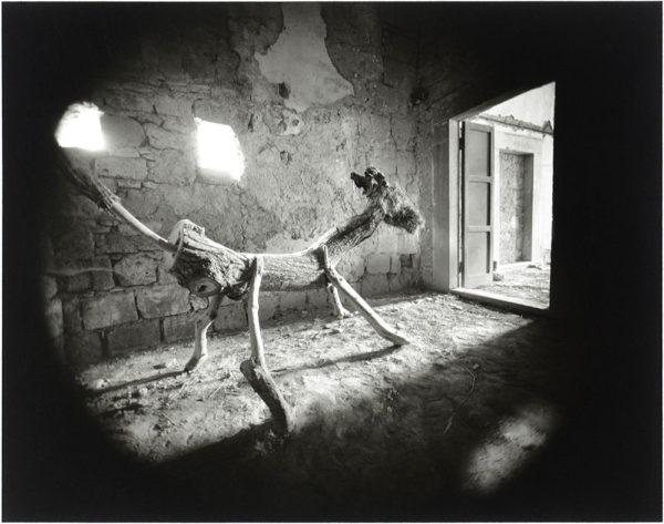 Civita di Bagnoregio  Italy  1973, gelatin silver print, 8 x 10 in ©Emmet Gowin