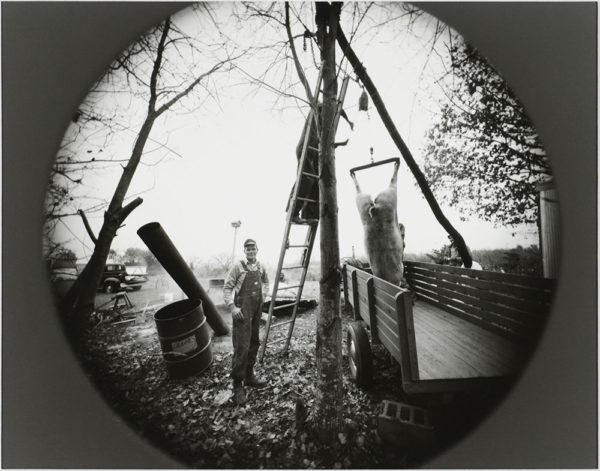 Hog Butchering  Near Danville  Virginia  1975, gelatin silver print, 8 x 10 in ©Emmet Gowin