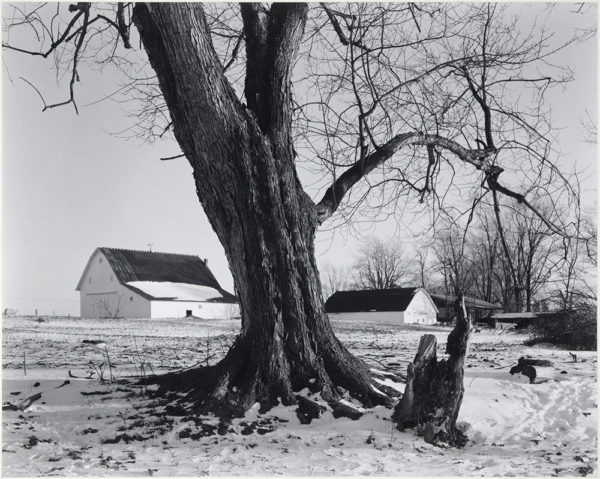 "Winslow Farm  Fairmount  Indiana  1985, gelatin silver print:1986, 10 1/2 x 13"" on board ©George Tice"