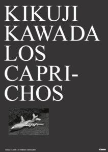 Kawada_100 Illusions Poster_2