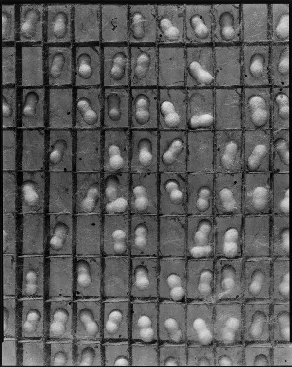 #72, gelatin silver print, printed in 2018, 20x24 in, ©Kozo Miyoshi