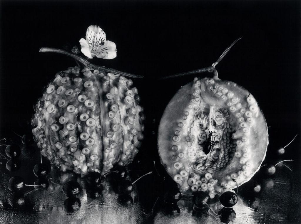 Kon_タコ+メロン, 1989